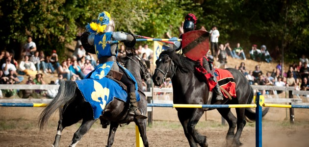 Chivalrous Jousting - It's me or him!